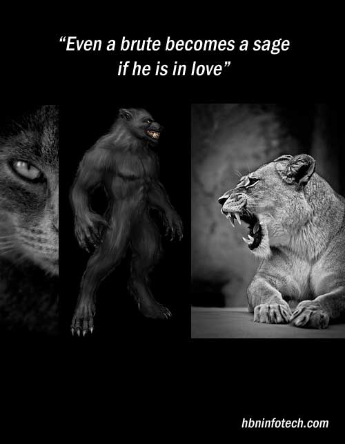 love and hate quotes images