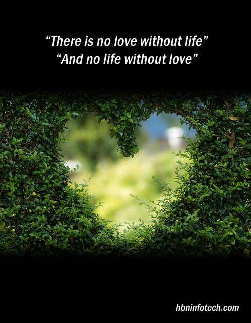 love is life quotes images